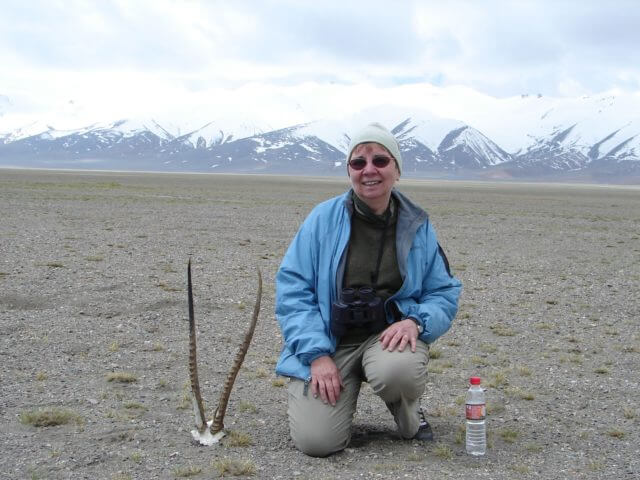 Jacqueline Briggs Martin kneeling beside a male chiru skull. She has a water bottle by her side and snowy mountains behind her.