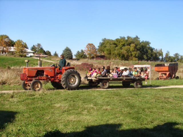 Kids on a trailer pulled behind a tractor.