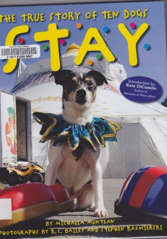 "Cover of the book ""Stay"""
